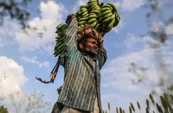 Aavishkaar Investee: INI Farms | Farmer Impact in the time of Covid-19 - Featured