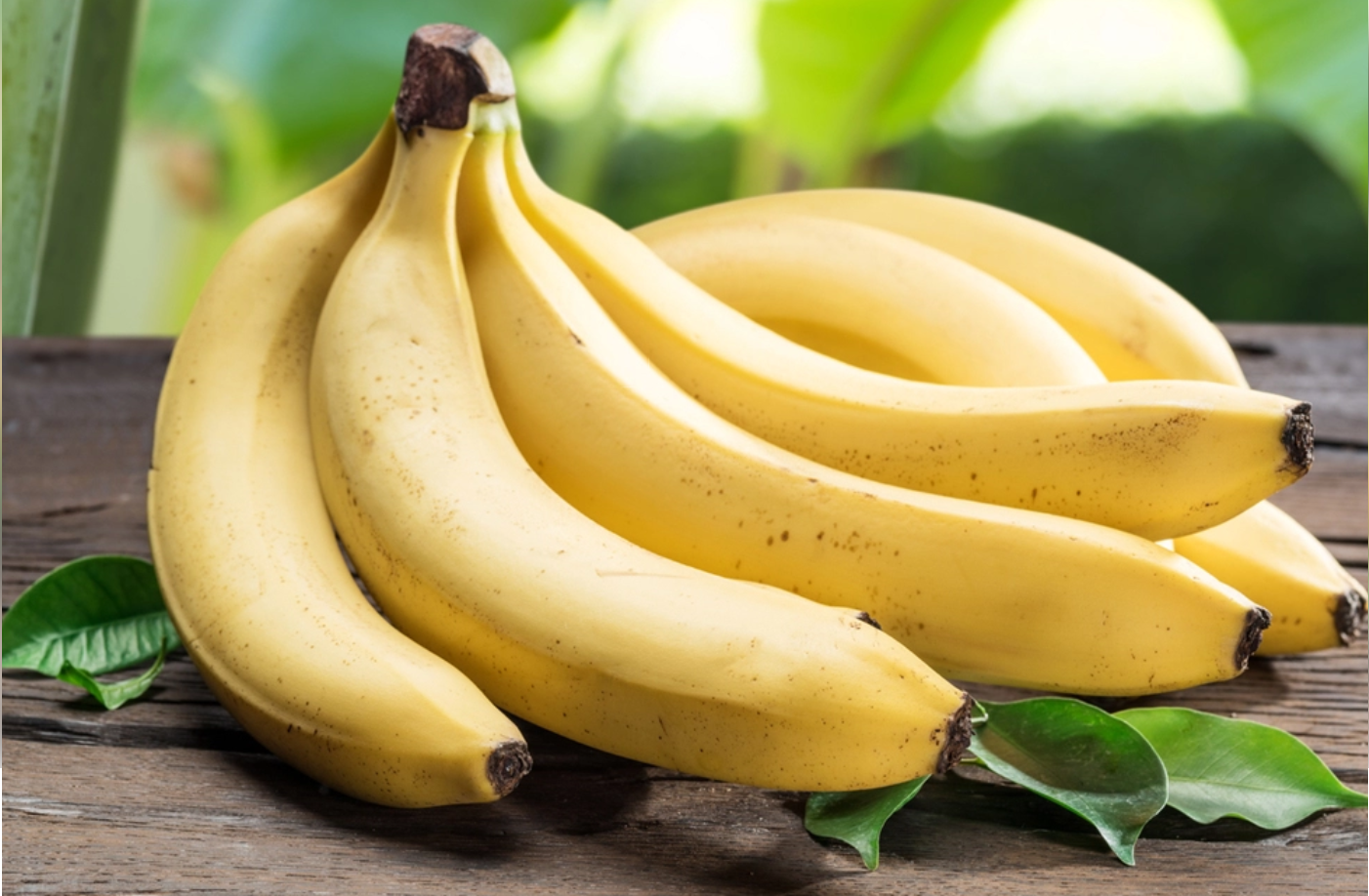 Time to move over, mango; it's a banana republic - Featured